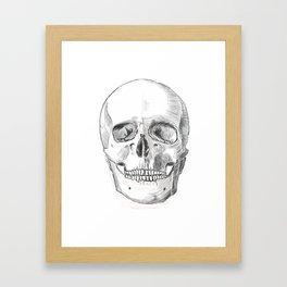 Skull Study Framed Art Print
