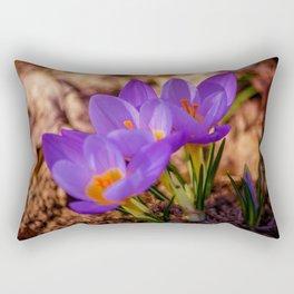 Concept nature : Crocus etruscus in silva Rectangular Pillow