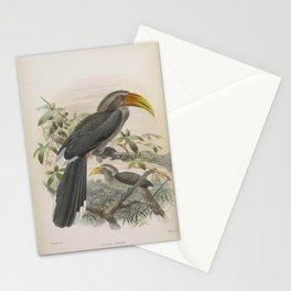 Malabar Grey Hornbill2 Stationery Cards