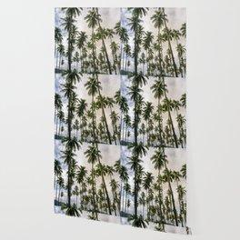 Palm Trees Kauai Hawaii Printable Wall Art   Tropical Beach Nature Ocean Coastal Travel Photography Print Wallpaper
