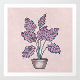 Caladium Plant Art Print