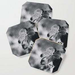 Autumn Grape Leaf in Black and White Coaster
