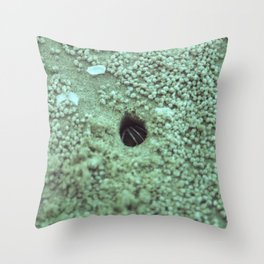 Crab Claws Throw Pillow