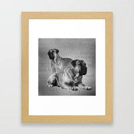 Boerboel - South African Mastiff Framed Art Print