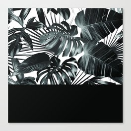 Palm Leaves and Black Canvas Print
