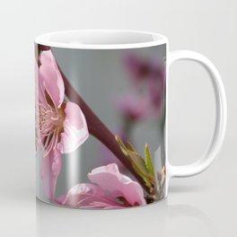 Honey Bee On Open Peach Tree Blossom Coffee Mug