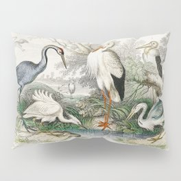 Common Crane White Stork Gigantic Crane Common Heron and Little Egret from A history of the earth an Pillow Sham
