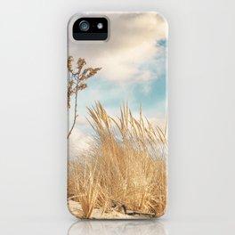 Golden Dune Grass iPhone Case