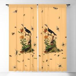 Halloween and entomology Blackout Curtain