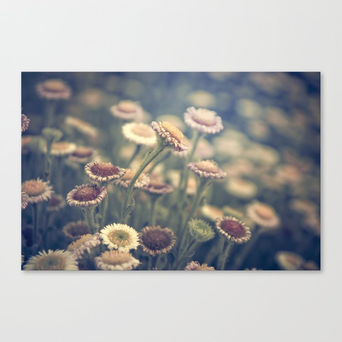 on our way out Canvas Print