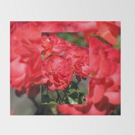 Flowerheads of red roses Throw Blanket