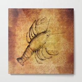 Marine Life - Lobster  Metal Print