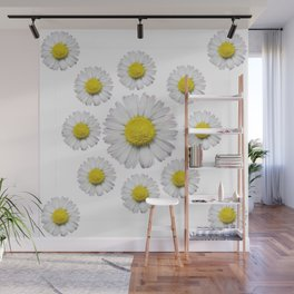 ALL WHITE SHASTA DAISY FLOWERS ART Wall Mural