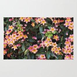 Tangerine Beauty Cross Vine Flowers Rug