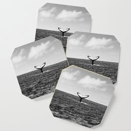Whale Tail Coaster