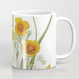 Mexican Poppy (Eschscholtzia mexicana) (1927) by Mary Vaux Walcott Coffee Mug