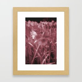Infra-Red Daffodils Framed Art Print