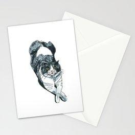 Miu Miu the Cat Stationery Cards