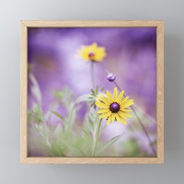 Purple Yellow Flower Photography, Purple Gold Green Nature Art Print, Daisy Floral Photo Framed Mini Art Print