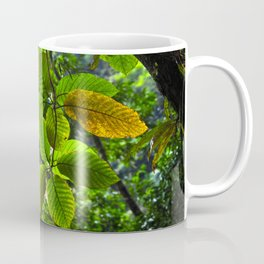 Backlit Leaves in the Peruvian Amazon Coffee Mug
