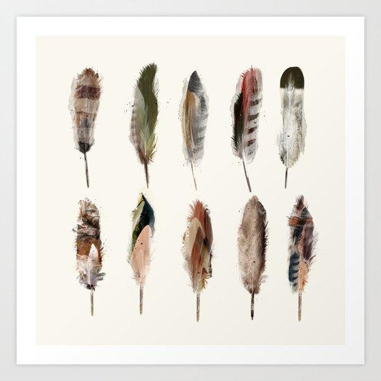 nature feathers Art Print