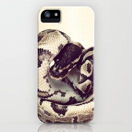 Ball Python | Snake iPhone Case