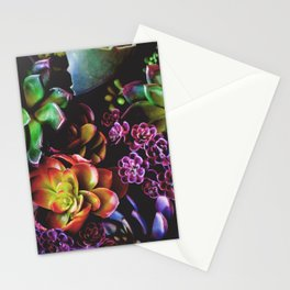 Colorful Succulent Plants Stationery Cards
