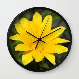 Bright Yellow Gazania Flower Wall Clock