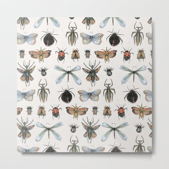 Entomology Metal Print