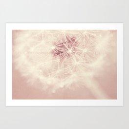 dandelion postcard Art Print