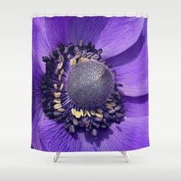 Anemone Purple Love Shower Curtain