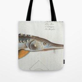 Vintage Illustration of a Sturgeon Fish (1785) Tote Bag