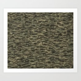 Fresh water fish camouflage Art Print