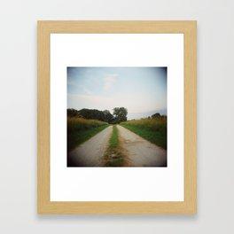 Road, Holga Framed Art Print