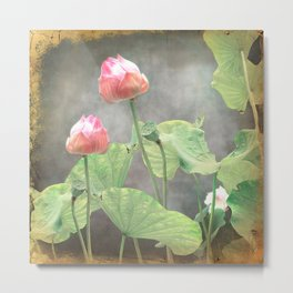 Asiatic Flowers in Pale Pink Metal Print