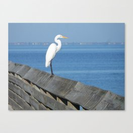 Island Bird Canvas Print