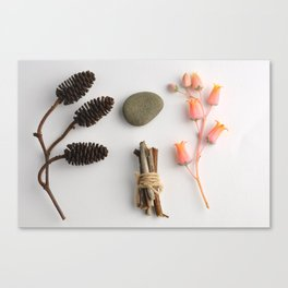 Flatlay Peach Succulent Stone Twigs Twine Pine Cone Art Print Photography Canvas Print