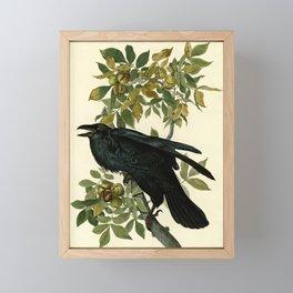 Raven Framed Mini Art Print