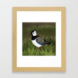 jz.birds Northern Lapwing Bird Design Framed Art Print