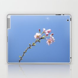 One of the Most Beautiful Things In This World Laptop & iPad Skin