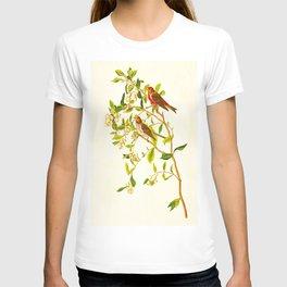 Lesser Red-Poll Bird T-shirt