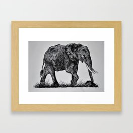 Pen & Ink Elephant Framed Art Print