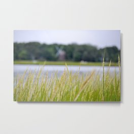 Windmill in the Weeds Metal Print