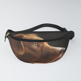 Brown Dog Fanny Pack