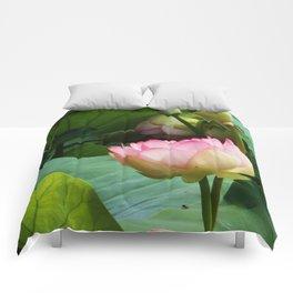 The Lotus Comforters