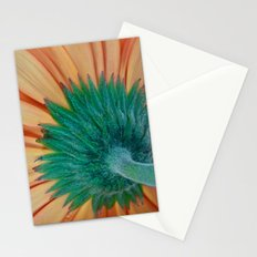 The Back Stationery Cards