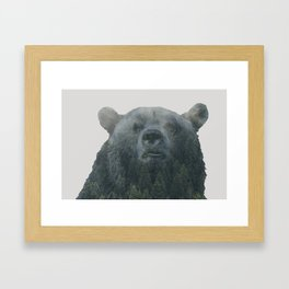 Forest Bear Framed Art Print