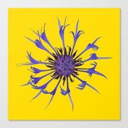 Thin blue flames Canvas Print