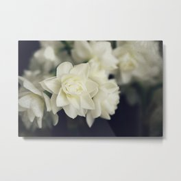 Gentle Jonquils Metal Print