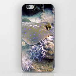 Blue Spotted Ray Feeding iPhone Skin